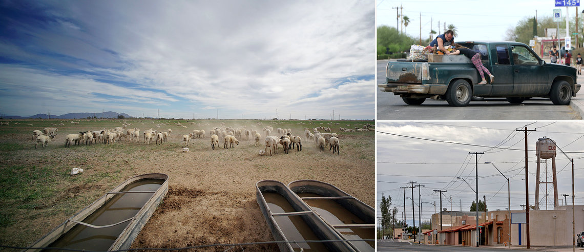 From left: Sheep on a farm along Arizona's Route 287; People load laundry into a truck in Eloy, Ariz.; Eloy's water tower looms over single-storied structures that line North Main Street.