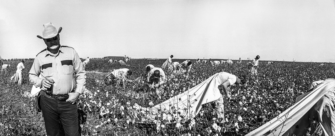 A field lieutenant with prisoners picking cotton at Cummins Prison Farm in 1975.