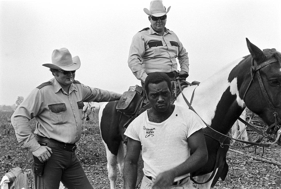 Cummins Prison Farm, 1975.