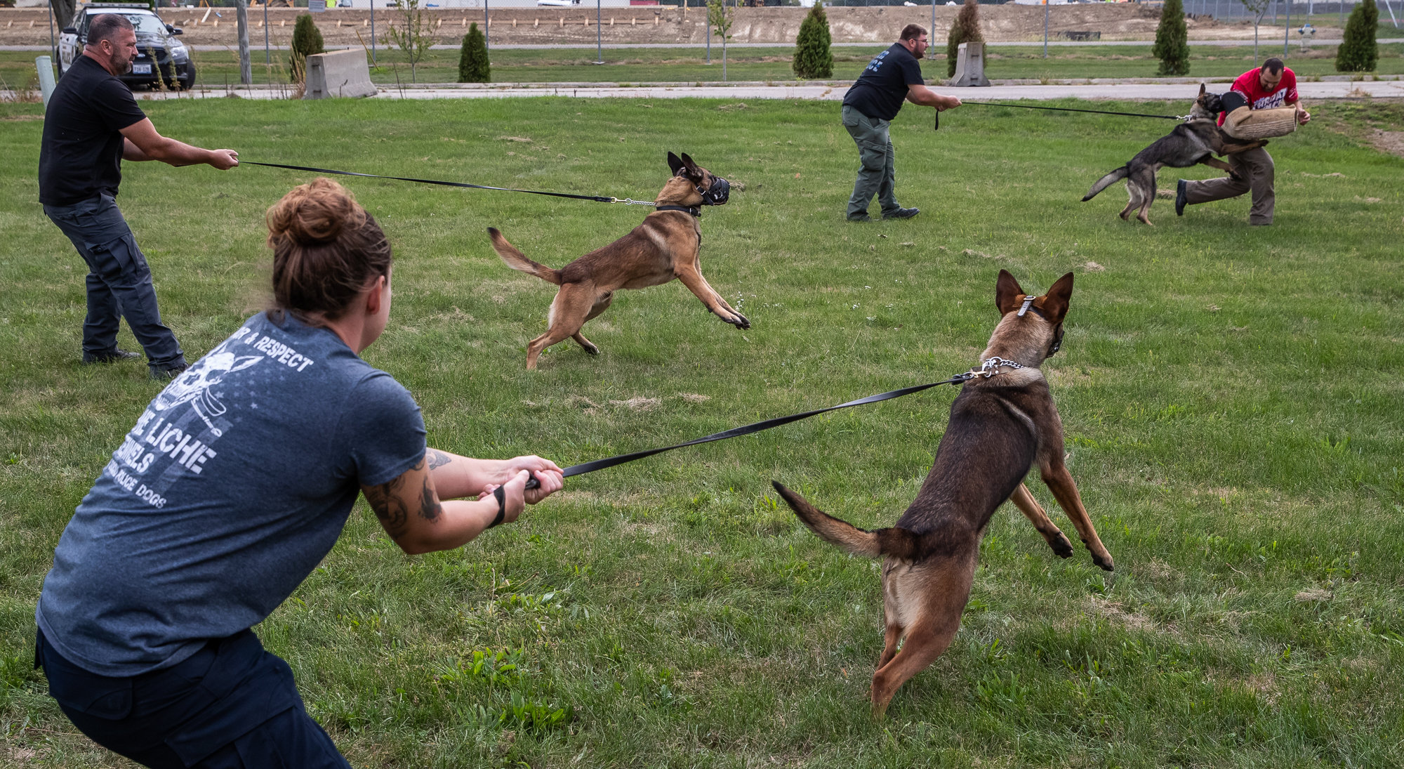 Law enforcement officers from around the United States train with their police dogs on how to capture a suspect at Vohne Liche Kennels, in Indiana, on Sept. 23, 2020. Dogs are muzzled for the protection of the man acting as a decoy, who is not wearing typical bite gear for this training exercise.