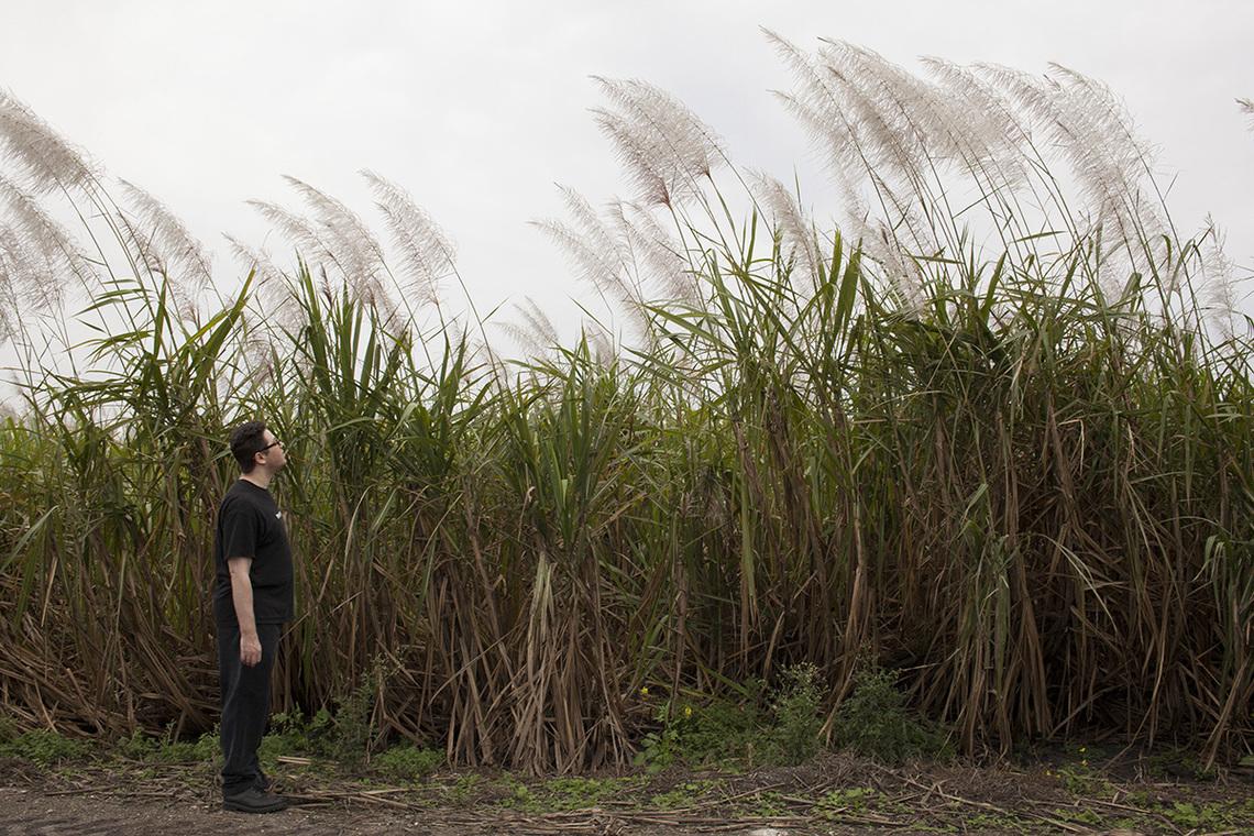 Ben walking around the sugarcane fields that surround the complex.